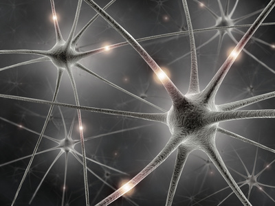 Spiegelneuronen